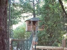 I Have Built A Treehouse - treehouse out u0027n u0027 about treehouses root costs