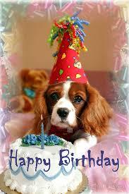 happy birthday casey happy birthday happy and birthdays