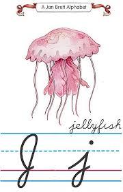 curisve j alphabet j jellyfish