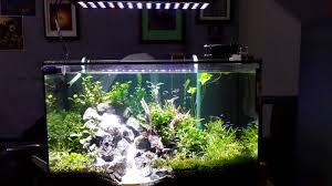 best led light for planted tank led aquarium lighting blog orphek orphek red model freshwater