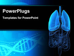 powerpoint design lungs powerpoint template human lungs on color background 16714