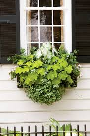 Decorative Plants For Home Spectacular Container Gardening Ideas Southern Living