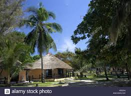 thatched beach bungalows andaman beach resort ko jum island