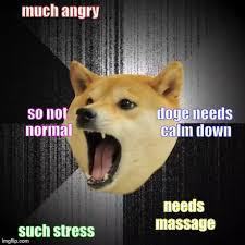 Shibe Meme Maker - insanity doge imgflip