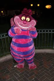 spirit halloween cheshire cat 79 best cheshire cat images on pinterest alice in wonderland