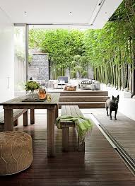 Bamboo Patio Cover Patio Bamboo Trees Design Ideas