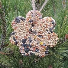 25 unique bird seed ornaments ideas on bird seed