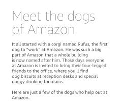 about amazon working at amazon dogs of amazon