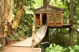 unusual bed and breakfast review of treehouse point hotel spot