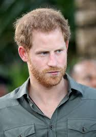 Prince Harry by Prince Harry Nobody Wants To Be A Royal The Hollywood Gossip