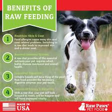 raw paws signature blend complete ground beef u0026 vegetable for dogs