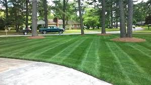 how to get a lush green lawn neighbors will envy angie u0027s list
