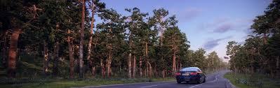 pine trees 3d models