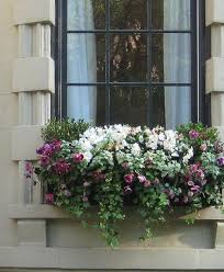 Hanging Planter Boxes by Best 25 Balcony Flower Box Ideas On Pinterest Outdoor Flower