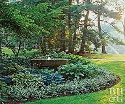 Shade Tree For Small Backyard - garden plans