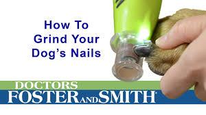 nail art stunning dog nail grinder images inspirations 71u