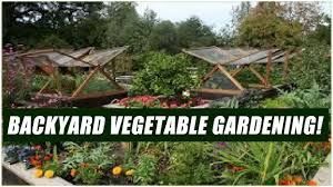 Gardening For Beginners Vegetables by How To Start A Vegetable Garden In Your Backyard For Beginners