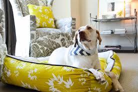 Barker Dog Bed Harry Barker Canvas Squeaky Bone U2013 Happy Dog