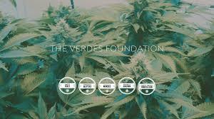 Alb Craigslist Free by Medical Cannabis Dispensary Albuquerque Verdes Foundation