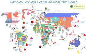 around the world in 32 flowers visual ly