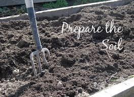 how to prepare soil for planting garden best idea garden