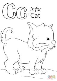 cat color pages preschool coloring pages ideas