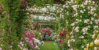 ross garden tours to the most beautiful places in the world