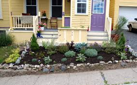 plant gardening awesome vegetable plants 10 bug repelling plants