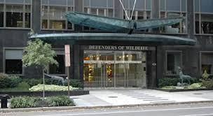 meet defenders defenders of wildlife
