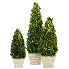 Artificial Topiaries - preserved boxwood topiary cones artificial topiary cones silk