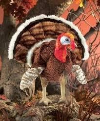 best 25 albuquerque turkey ideas on preschool
