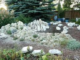 What Is A Rock Garden What Is A Rock Garden If You Room For A River Bed You