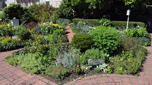 herbal garden herb garden design ideas internetunblock us internetunblock us