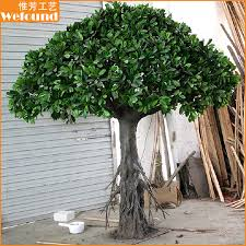 ft0926 small indoor ficus tree for home decoration we found limited