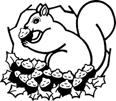 nut coloring page nut clipart free download clip art free clip art on clipart