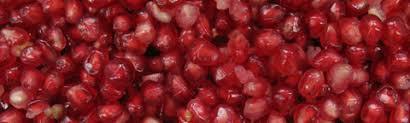 pomegranate production uga cooperative extension