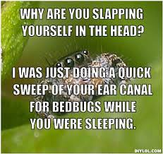 Spider Meme Misunderstood Spider Meme - misunderstood spider meme generator why are you slapping yourself in
