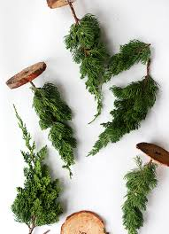 miniature christmas trees diy fresh mini christmas trees from tree lot scraps say yes