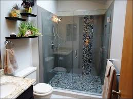 Walk In Shower Designs by Small Bathroom Idea With Walk In Shower Walkin Designs Also Ideas