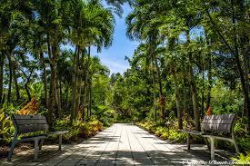 Naples Florida Botanical Garden Top 45 Astonishing Photos Of The Naples Botanical Garden