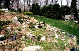 Rock Garden Landscaping Ideas by Neutral Cream House Painting Designed Before Front Yard Garden