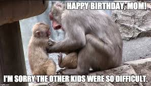 Happy Birthday Mum Meme - happy birthday mom i m sorry the other kids were so difficult meme