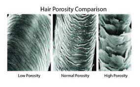 how to take care of the hair cuticle getting to know your hair understanding porosity nadia s notes