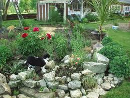 lawn u0026 garden amazing backyard rock garden landscape ideas