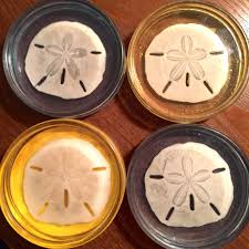 Unique Coasters Diy Sand Dollar Resin Coasters A Grandpa U0027s Seashell Workshop