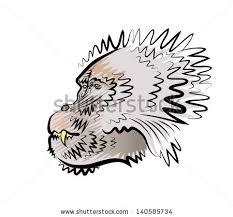 vector drawing head monkey profile stock vector 140585734