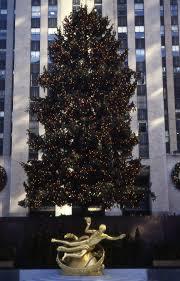 the 1998 rockefeller center christmas tree lauren lanphear