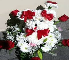 online florists florist inc 800 637 8803 buy order flowers online flowers