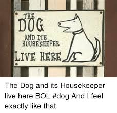 Housekeeper Meme - and its houseseeper live here the dog and its housekeeper live