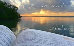 seek early bible gem onlythebible